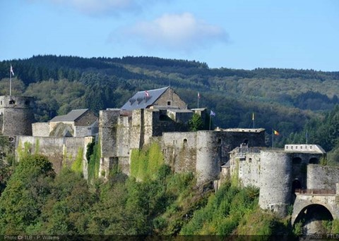 Bouillon Fortified Castle and Falconry Show